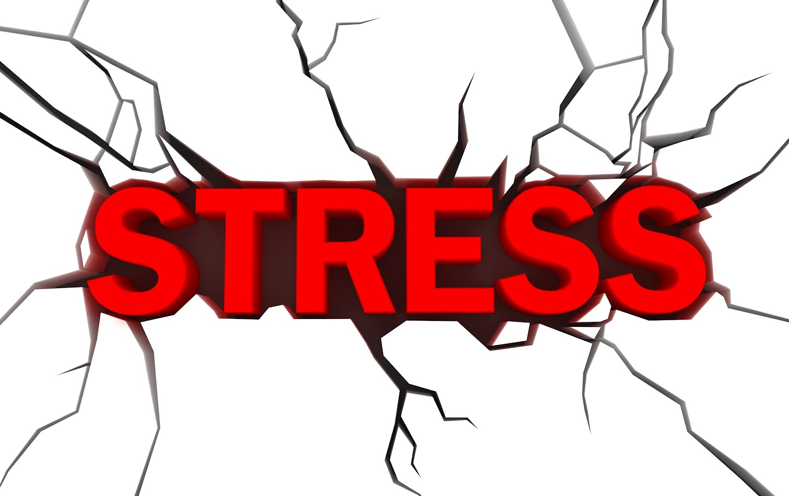stress and everyday life Stress affects people in different ways, but a balanced lifestyle can help you manage everyday stress stress busters stress can affect your health and your life, so you need to know.